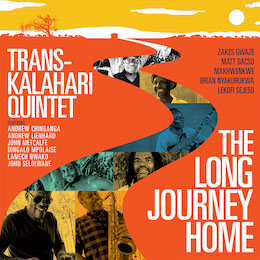 THE LONG JOURNEY HOME album cover