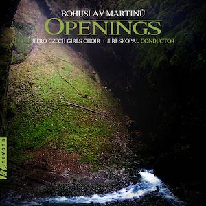 OPENINGS album cover